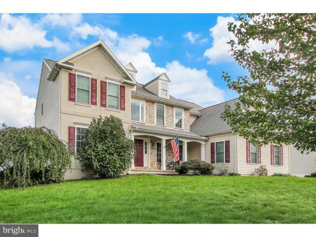 53 Sweetwater Lane, WERNERSVILLE, PA 19565 (#1008344166) :: Colgan Real Estate