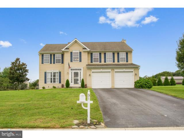 91 Limerick Lane, MAGNOLIA, DE 19962 (#1008347844) :: Colgan Real Estate