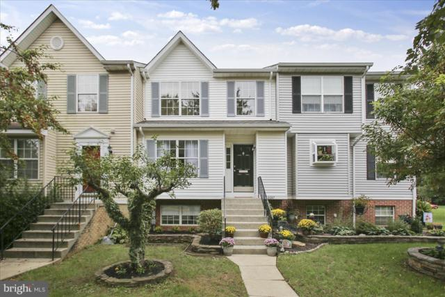 6687 Sea Gull Court, FREDERICK, MD 21703 (#1008348030) :: The Putnam Group