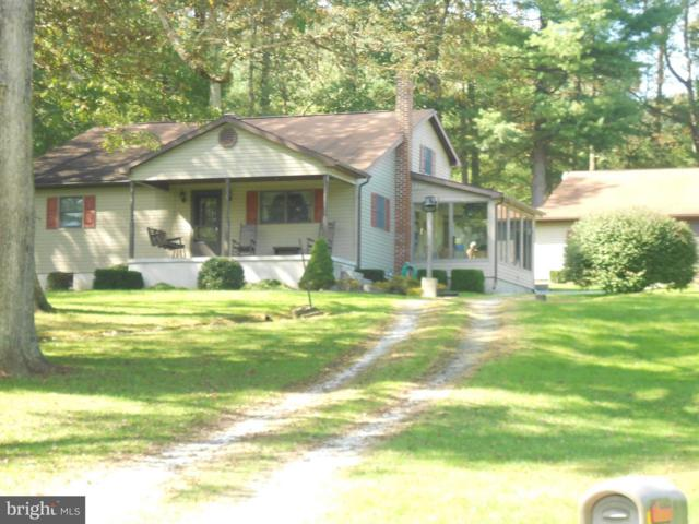 710 Buchanan Valley Road, ORRTANNA, PA 17353 (#1008348034) :: Colgan Real Estate