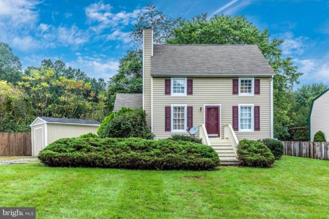 1 Vista Avenue, THURMONT, MD 21788 (#1008348124) :: Colgan Real Estate