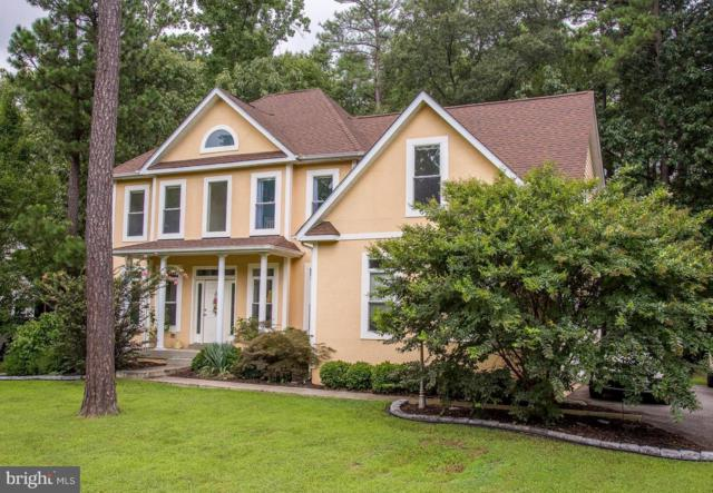 11300 Lord Baltimore Drive, SWAN POINT, MD 20645 (#1008348406) :: Colgan Real Estate