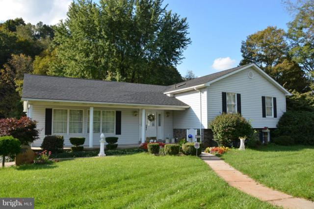 14401 New Georges Creek Road, FROSTBURG, MD 21532 (#1008348554) :: Colgan Real Estate