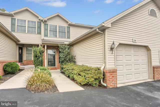 224 Whitetail Terrace, MARYSVILLE, PA 17053 (#1008348876) :: The Craig Hartranft Team, Berkshire Hathaway Homesale Realty