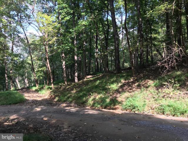 Doom Peak Road, LINDEN, VA 22642 (#1008349350) :: The Licata Group/Keller Williams Realty