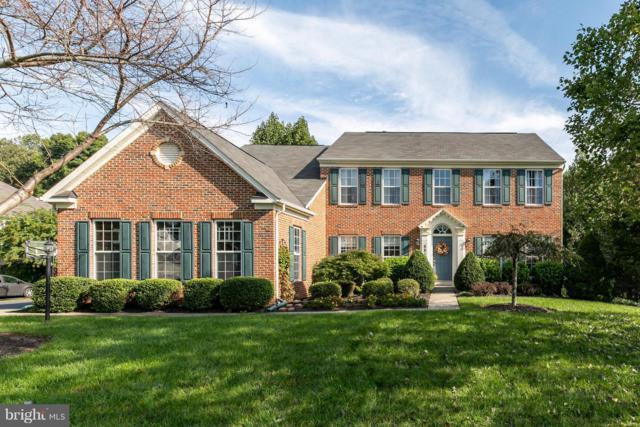 5516 Liber Court, GAINESVILLE, VA 20155 (#1008349610) :: Colgan Real Estate