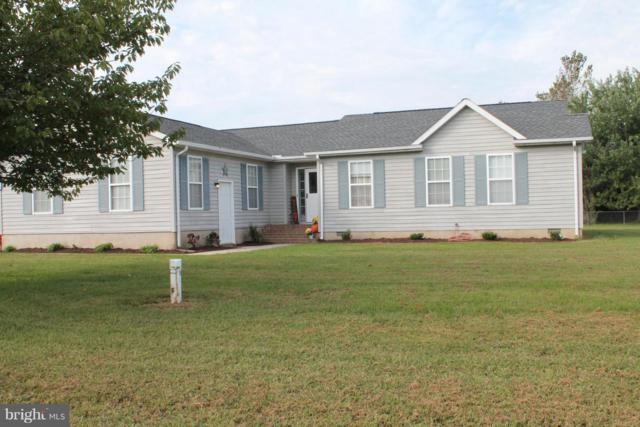 10 Meadow Drive, MILFORD, DE 19963 (#1008349678) :: Colgan Real Estate