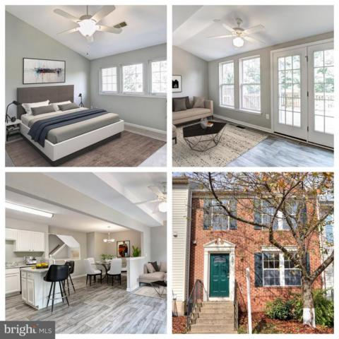 6340 Field Flower Trail, CENTREVILLE, VA 20121 (#1008350396) :: RE/MAX Executives