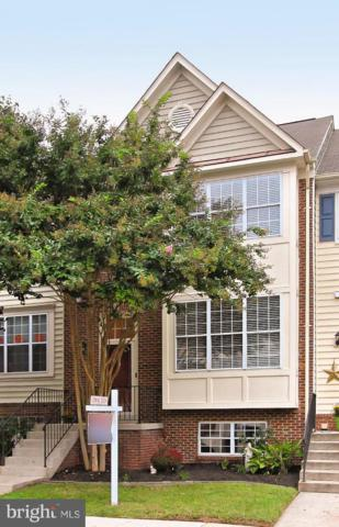 43178 Glenelder Terrace, ASHBURN, VA 20147 (#1008353278) :: Circadian Realty Group