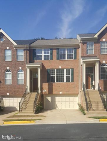 47628 Loweland Terrace, STERLING, VA 20165 (#1008353724) :: AJ Team Realty