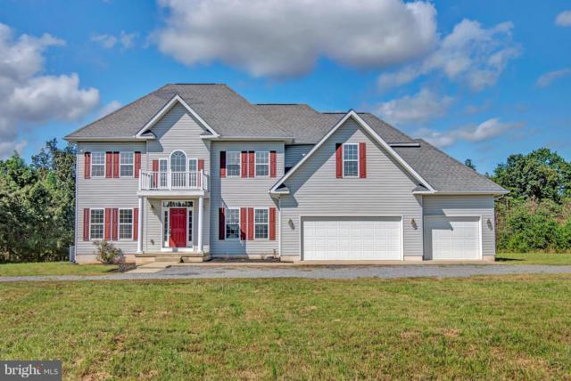 4380 Musterfield Road, CULPEPER, VA 22701 (#1008354418) :: Remax Preferred | Scott Kompa Group