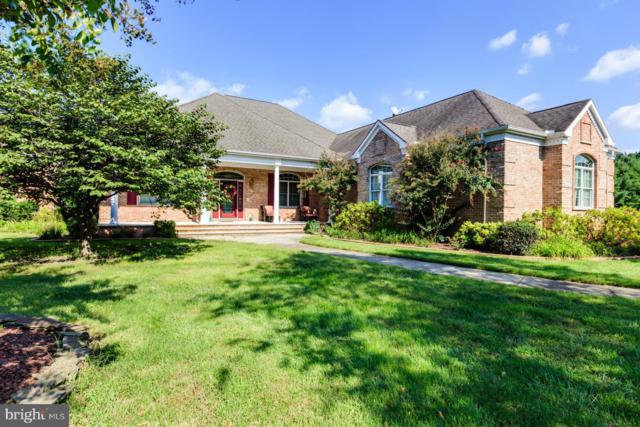 25020 Rivermere Drive, EDEN, MD 21822 (#1008355134) :: Condominium Realty, LTD