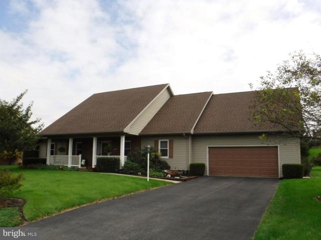 678 Kittatinny Drive, CHAMBERSBURG, PA 17202 (#1008355600) :: The Heather Neidlinger Team With Berkshire Hathaway HomeServices Homesale Realty