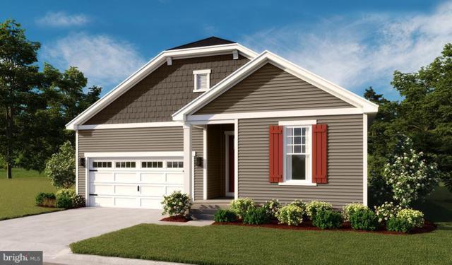 Grand Oaks Drive- Onyx, BOYCE, VA 22620 (#1008356342) :: Remax Preferred | Scott Kompa Group