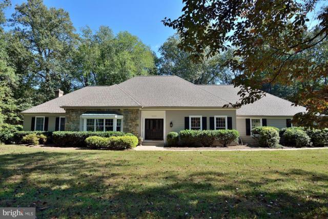 10121 Walker Lake Drive, GREAT FALLS, VA 22066 (#1008356438) :: Colgan Real Estate