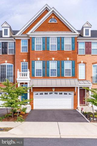 23402 Lewis Hunt Square, ASHBURN, VA 20148 (#1008356738) :: Great Falls Great Homes