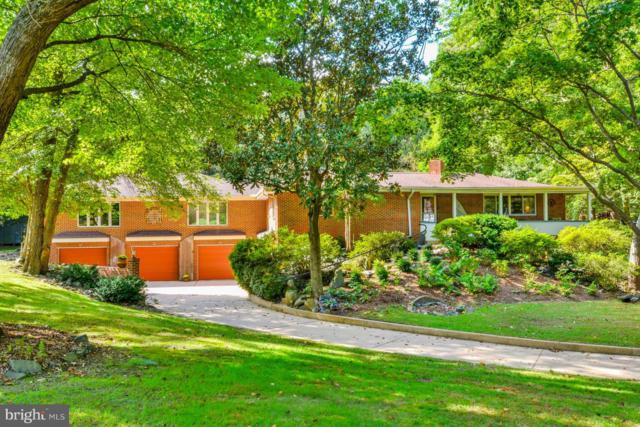 1144 Ferber Avenue, ARNOLD, MD 21012 (#1008356816) :: Great Falls Great Homes