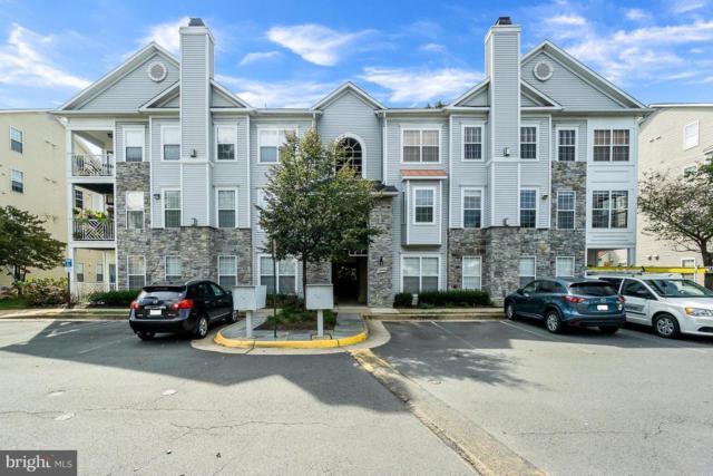 5940 Founders Hill Drive #301, ALEXANDRIA, VA 22310 (#1008356834) :: Dart Homes