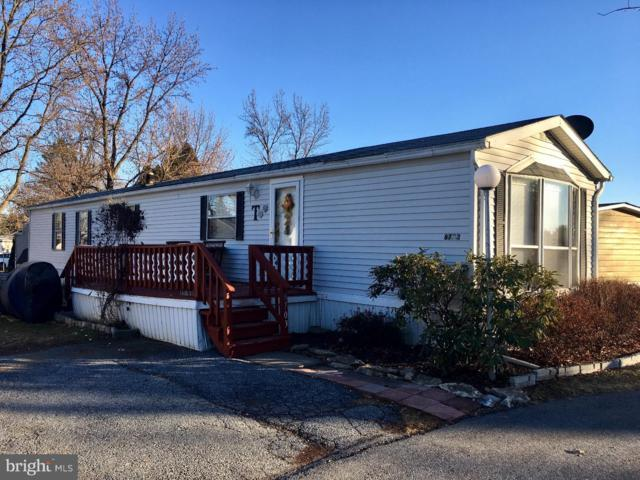 8703 Turkey Ridge Road, BREINIGSVILLE, PA 18031 (#1008357718) :: Colgan Real Estate