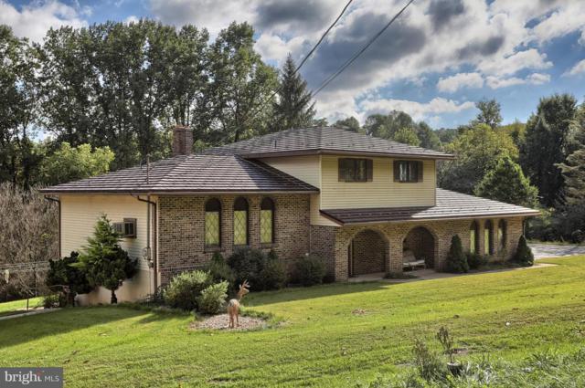 2781 Camp Swatara Road, BETHEL, PA 19507 (#1008357878) :: Colgan Real Estate
