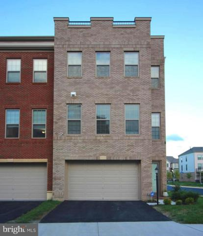 23462 Adagio Terrace, ASHBURN, VA 20147 (#1008357890) :: Colgan Real Estate