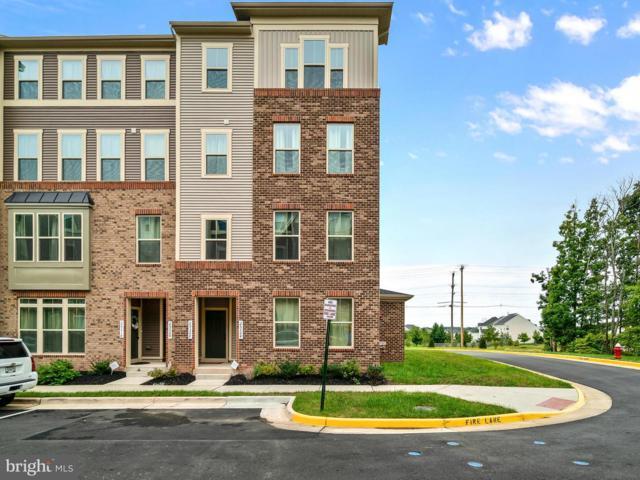 25322 Trumpet Vine Terrace, ALDIE, VA 20105 (#1008361080) :: RE/MAX Executives
