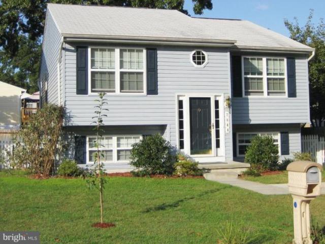 7844 East Shore Road, PASADENA, MD 21122 (#1008361338) :: Remax Preferred | Scott Kompa Group