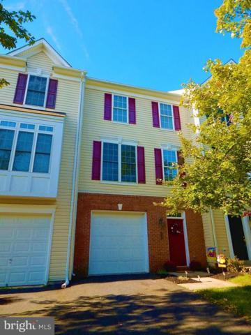 827 Fairview Village Court #5, CULPEPER, VA 22701 (#1008361360) :: Great Falls Great Homes