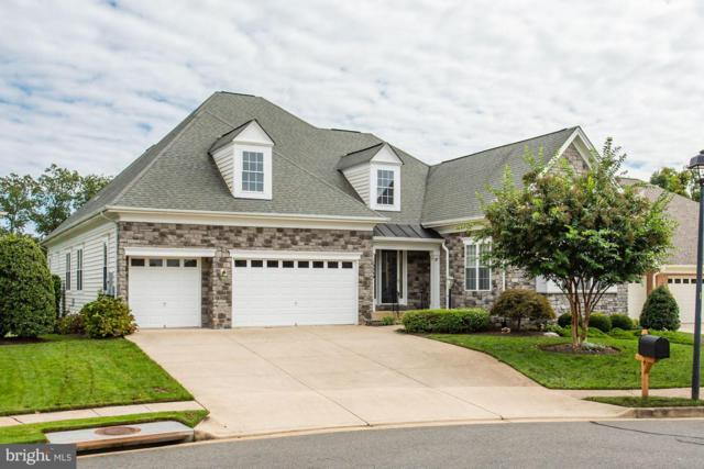 13449 Brightview Way, GAINESVILLE, VA 20155 (#1008361396) :: The Hagarty Real Estate Team