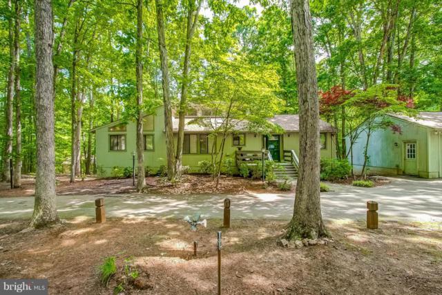 304 Wilderness Drive, LOCUST GROVE, VA 22508 (#1008361928) :: Colgan Real Estate