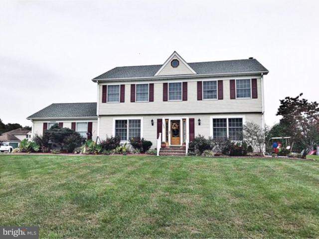 132 Parkway Drive, DOVER, DE 19901 (#1008362684) :: The Windrow Group