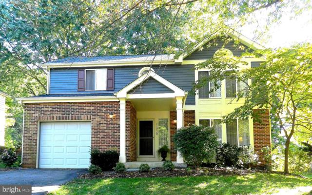 11728 Othello Terrace, GERMANTOWN, MD 20876 (#1008372318) :: The Withrow Group at Long & Foster