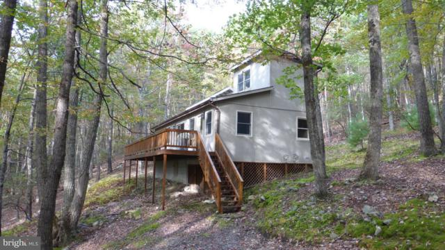 308 Hunters Ridge Road, LOST RIVER, WV 26810 (#1009092274) :: Colgan Real Estate