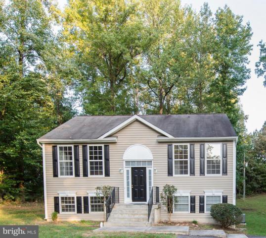 921 Swan Lane, RUTHER GLEN, VA 22546 (#1009127686) :: Colgan Real Estate