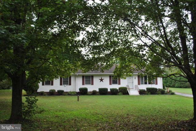 10651 Tintah Road, CHESTERTOWN, MD 21620 (#1009154950) :: Maryland Residential Team