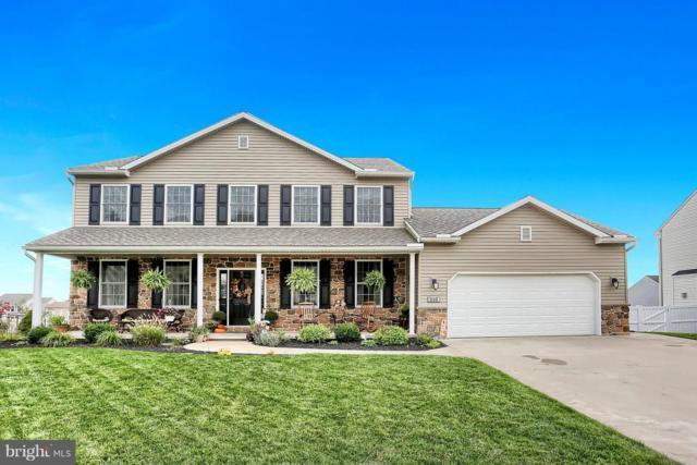 310 Braddock Drive, ETTERS, PA 17319 (#1009179844) :: Benchmark Real Estate Team of KW Keystone Realty