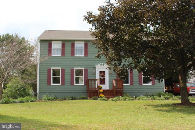 131 Nightingale Avenue, STEPHENS CITY, VA 22655 (#1009185608) :: Colgan Real Estate