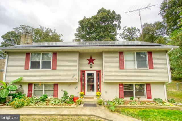 202 Wheeler Drive, GREENSBORO, MD 21639 (#1009189188) :: Colgan Real Estate
