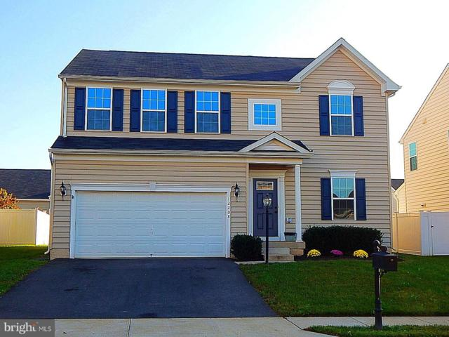 12208 Salt Cedar Lane, CULPEPER, VA 22701 (#1009585472) :: Advance Realty Bel Air, Inc
