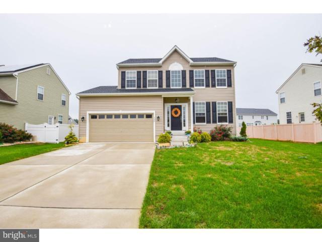 288 Rushfoil Drive, WILLIAMSTOWN, NJ 08094 (MLS #1009612144) :: The Dekanski Home Selling Team