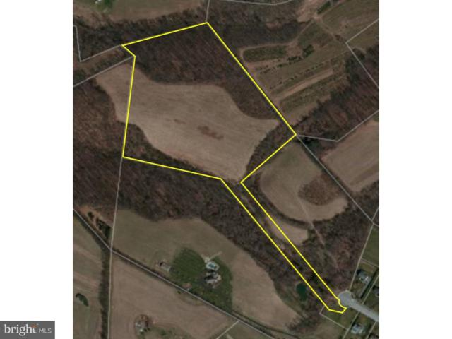 22 Fox Glen Drive, SINKING SPRING, PA 19608 (#1009623698) :: Remax Preferred | Scott Kompa Group
