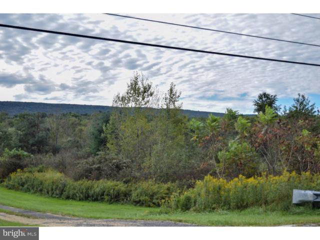 0 Summer Valley Road, NEW RINGGOLD, PA 17960 (#1009635864) :: Remax Preferred | Scott Kompa Group