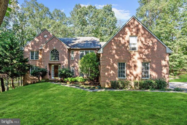 11919 Park Heights Avenue, OWINGS MILLS, MD 21117 (#1009666038) :: Remax Preferred | Scott Kompa Group