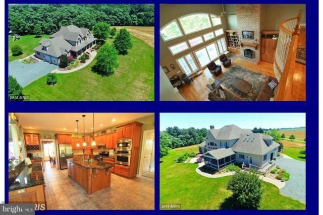 8601 Chestertown Road, CHESTERTOWN, MD 21620 (#1009688038) :: Maryland Residential Team