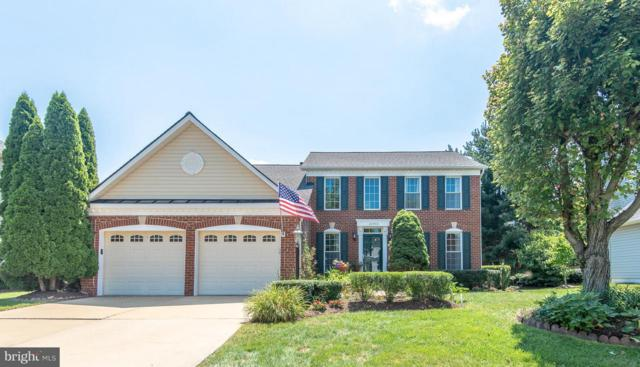 47773 Rafter Court, STERLING, VA 20165 (#1009688368) :: The Greg Wells Team