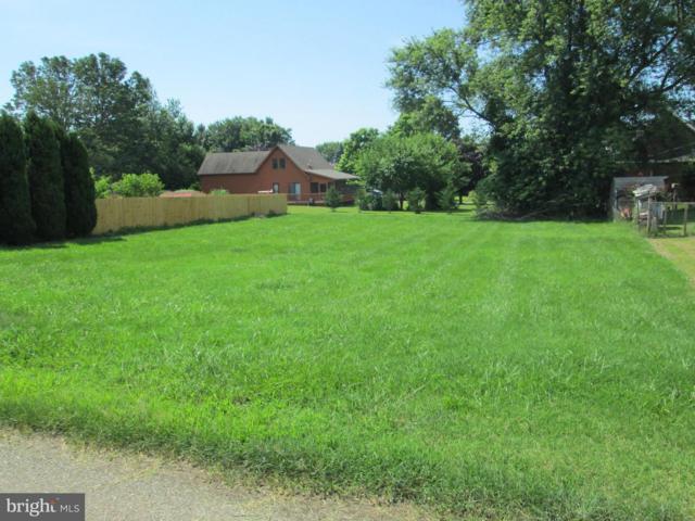 0 Delaware Avenue, EARLEVILLE, MD 21919 (#1009690722) :: Colgan Real Estate
