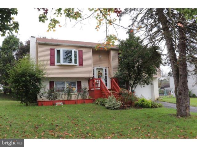 87 W Charles Street, WERNERSVILLE, PA 19565 (#1009907286) :: Remax Preferred | Scott Kompa Group