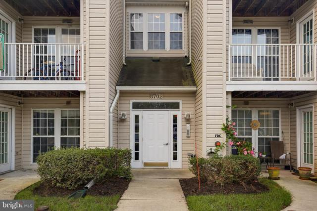 8702 Natures Trail Court #302, ODENTON, MD 21113 (#1009908258) :: Dart Homes