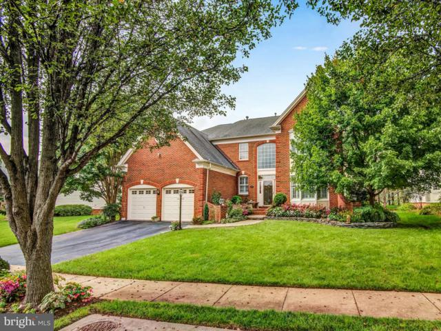 5668 Shoal Creek Drive, HAYMARKET, VA 20169 (#1009908868) :: The Hagarty Real Estate Team