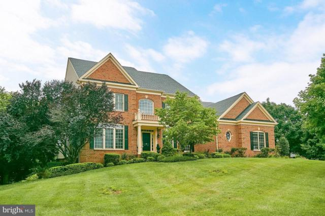 5595 Dean Chapel Court, HAYMARKET, VA 20169 (#1009909370) :: The Hagarty Real Estate Team